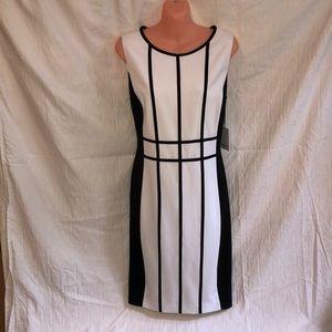 Calvin Klein Dress Black/White Size 12